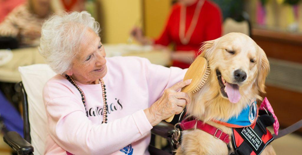Ida Corsini testimonial Pet Therapy Senior Adult Recreation rehab nursing home rehabilitation forest hills queens