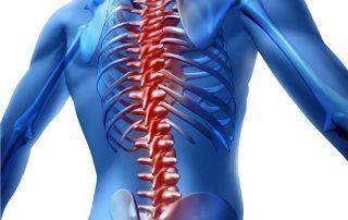 spinal cord injury rehabilitation