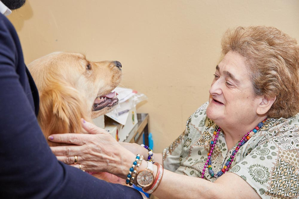 Elderly lady getting pet therapy as a part of rehab for depression